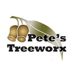 Logo of Pete's Treeworx