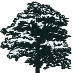 Logo of Lamond Landscaping & Horticultural Services