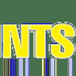 Logo of NT Scaffolds P/L