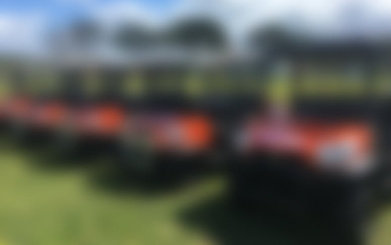 1800 Buggies featured image