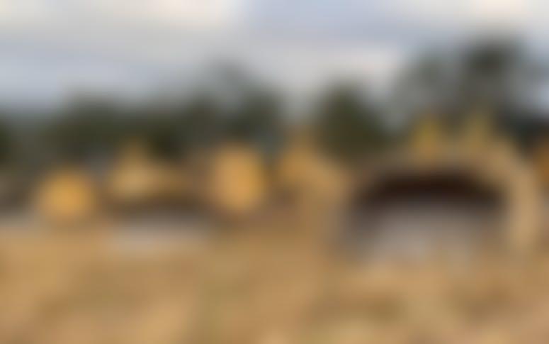 Bizz's Farm Forestry & Civil Pty Ltd featured image