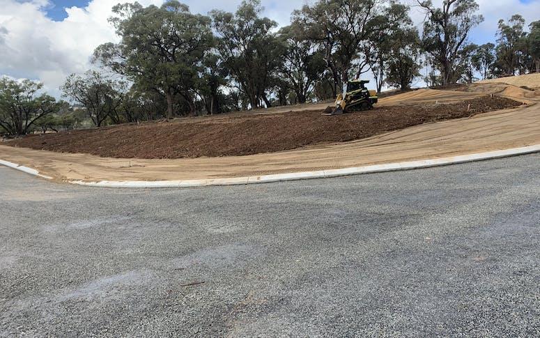 Wombat civil featured image