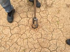 Soil Testing in Sydney Metro