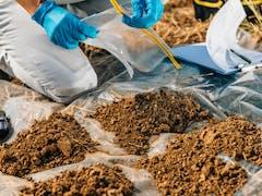 Soil Testing in Perth Metro