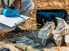 Soil Testing in Brisbane CBD