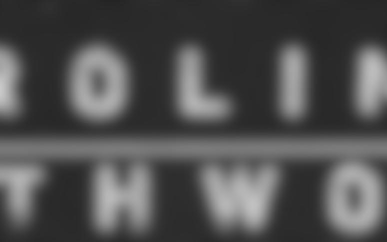 Proline Earthworks featured image