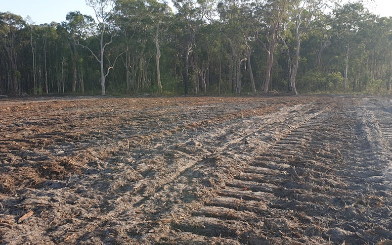Sustainable Land Clearing Solutions featured image